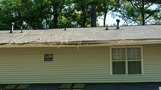 Regular Cleaning Is Less Expensive Than Gutter Replacement