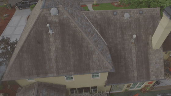 Roof Algae: Scarier than it sounds!